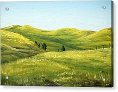 Spring In California Acrylic Print by AnnaJo Vahle