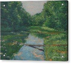 Spring Pond Reflection Acrylic Print by Gregory Arnett
