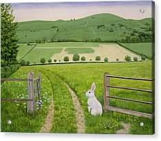 Spring Rabbit Acrylic Print by Ditz