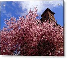 Spring Acrylic Print by Robert Nickologianis