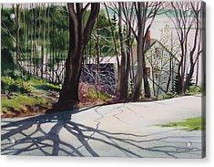 Spring Shadows Acrylic Print by Karol Wyckoff