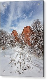 Spring Snow Acrylic Print by Darren  White