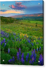 Spring Storm Passing Acrylic Print by Mike  Dawson