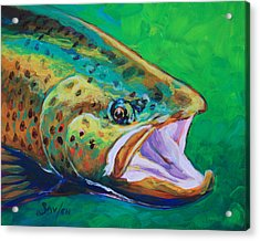 Spring Time Brown Trout- Fly Fishing Art Acrylic Print by Savlen Art