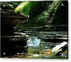 Springs Of Living Water Acrylic Print by Christian Mattison