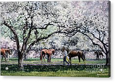 Springtime At Keeneland Acrylic Print by Thomas Allen Pauly