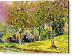 Springtime In Sawgrass Park Acrylic Print by Gary Debroekert