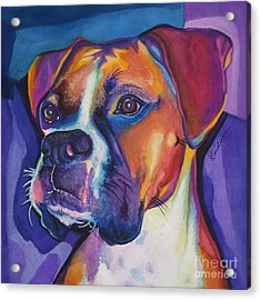 Square Boxer Portrait Acrylic Print by Robyn Saunders
