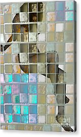 Squared Away 1 Acrylic Print by Jeff Breiman