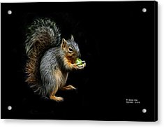 Squirrel - 8331 - F Acrylic Print by James Ahn