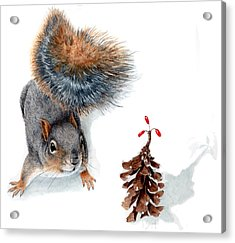 Squirrel And Festive Pine Cone Acrylic Print by Inger Hutton
