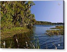 St Johns River Florida Acrylic Print by Christine Till
