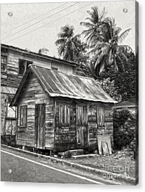 St Lucia - Old Shack Acrylic Print by Gregory Dyer