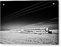 stack of frozen snow covered hay bales in a field Forget Saskatchewan Canada Acrylic Print by Joe Fox
