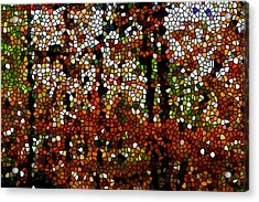Stained Glass Autumn Colors In The Forest  Acrylic Print by Lanjee Chee