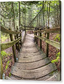 Stairs To Miners Falls Acrylic Print by Twenty Two North Photography