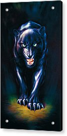 Stalking Panther Acrylic Print by Andrew Farley