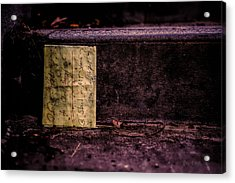 Stand Or Not Stand Acrylic Print by Bob Orsillo