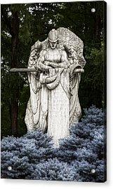 Standing Guard Acrylic Print by Tom Mc Nemar