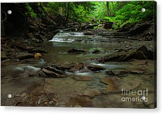 Standing In The Stream Acrylic Print by Steve Clough