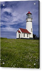 Standing Tall Acrylic Print by Andrew Soundarajan