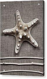 Starfish And Sticks Acrylic Print by Carol Leigh