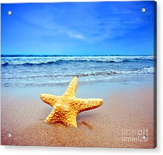 Starfish On A Beach   Acrylic Print by Michal Bednarek