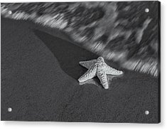 Starfish On The Beach Bw Acrylic Print by Susan Candelario