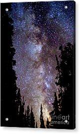 Starry Night -  The Milky Way Acrylic Print by Douglas Taylor