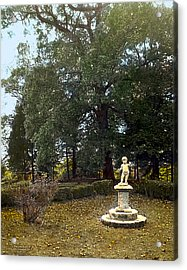 Statue And Tree Acrylic Print by Terry Reynoldson