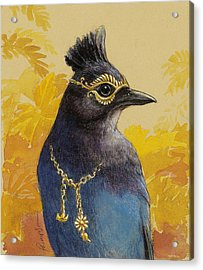 Steller's Jay Goes To The Ball Acrylic Print by Tracie Thompson