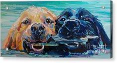 Stick It Acrylic Print by Kimberly Santini