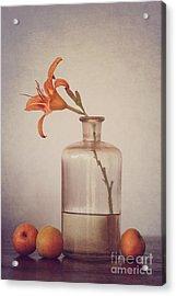 Still Life With Apricots Acrylic Print by Diana Kraleva