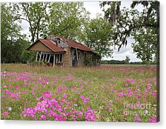 Still Life With Old House Acrylic Print by Theresa Willingham