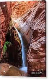 Stone Creek Fall Acrylic Print by Inge Johnsson
