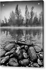 Stones And Trees Acrylic Print by Davorin Mance