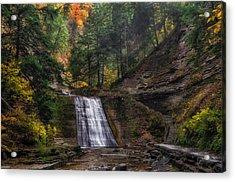 Stony Brook Park Acrylic Print by Mark Papke