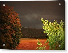 Storm Coming Acrylic Print by Flow Fitzgerald