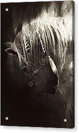 Storm Acrylic Print by Lyndsey Warren