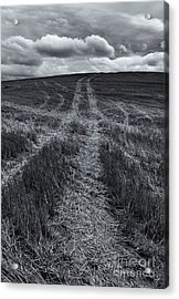 Storm Tracks Acrylic Print by Mike  Dawson