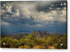 Storms Over The Sonoran Desert  Acrylic Print by Saija  Lehtonen