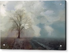 Stormy Day Acrylic Print by Steve K