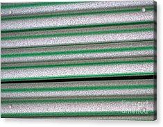 Straw Green Acrylic Print by Carol Lynch