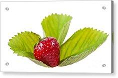 Ripe Strawberry Fruit Lying On Leaf On White  Acrylic Print by Arletta Cwalina