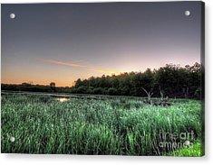 Streaky Swamp Sunrise Acrylic Print by Deborah Smolinske