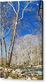 Acrylic Print featuring the photograph Stream In Spring Montgomery County Pennsylvania by A Gurmankin