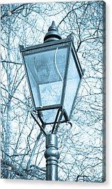 Street Lamp Acrylic Print by Tom Gowanlock
