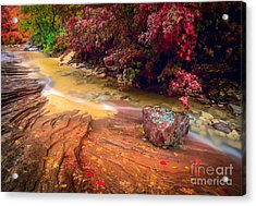 Striated Creek Acrylic Print by Inge Johnsson