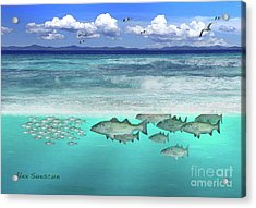 Stripers In The Surf Acrylic Print by Alex Suescun