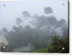 Strong Winds During Hurricane Irene Acrylic Print by Science Photo Library